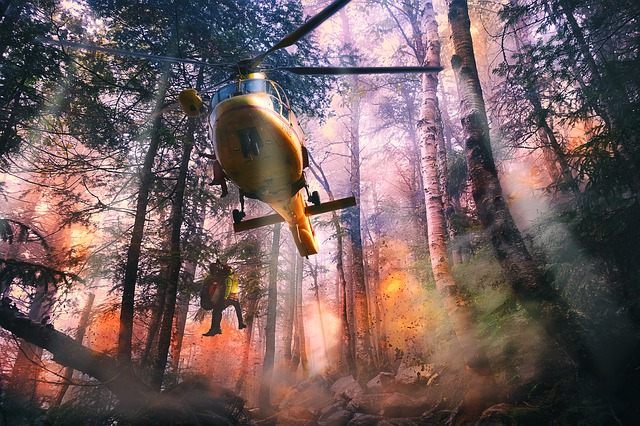 Forest Fire Rescue
